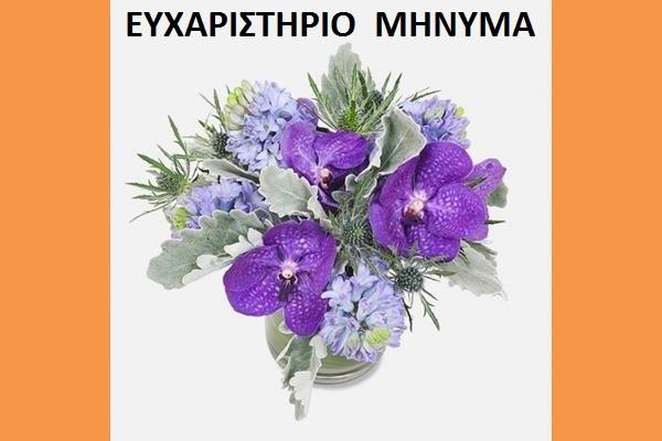 ΕΥΧΑΡΙΣΤΗΡΙΟ ΜΗΝΥΜΑ 2