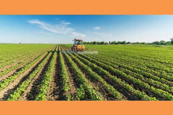 Η επόμενη μέρα της ελληνικής αγροτικής οικονομίας